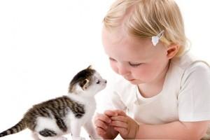 домашний питомец для ребенка