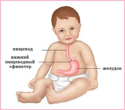 pishchevod-rebenka