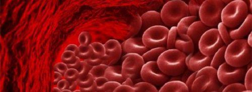 normy-gemoglobina-u-detej-do-goda.jpg