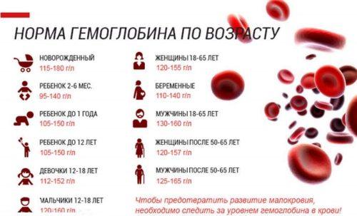 nizkij-gemoglobin-prichiny-i-posledstviya.jpg