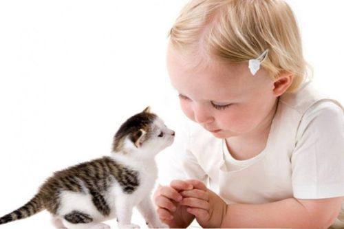 Преимущества содержания домашнего питомца для воспитания детей