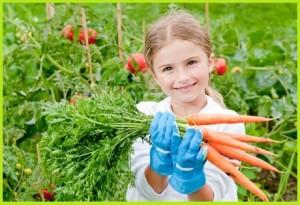Питание ребенка в летнее время