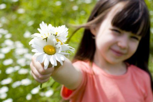 Рекомендации родителям на лето в Детском саду: подробно о здоровье и безопасности детей