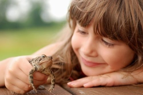 Как вывести бородавку у ребенка на руке?