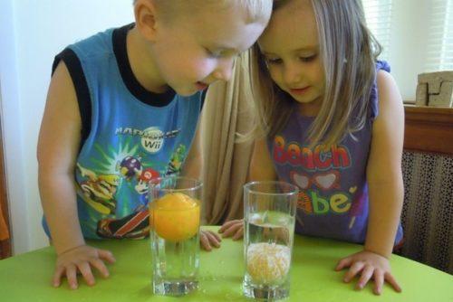 Опыты для детей 5-6 лет: в детском саду