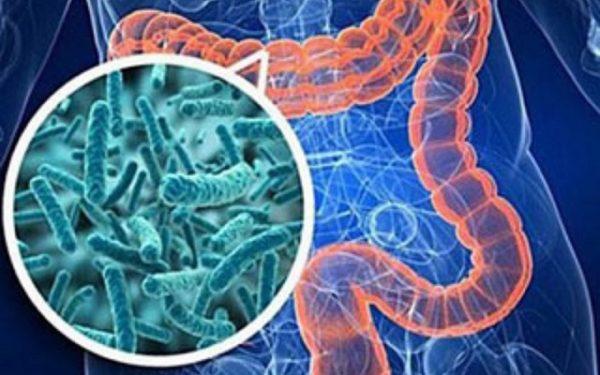 Кишечный грипп: симптомы и лечение у детей