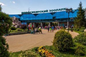 Куда сходить с детьми в Новосибирске