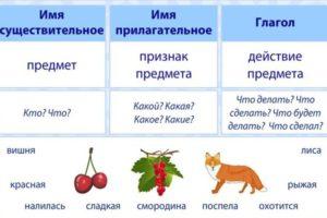 русский язык части речи