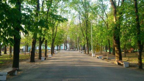 Детский парк им. В. Черевичкина.jpg