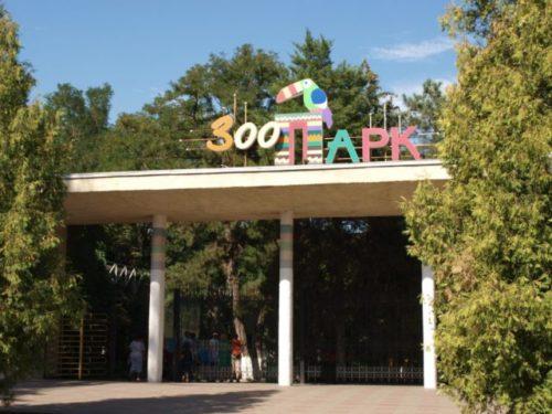 Ростовский зоопарк.jpg