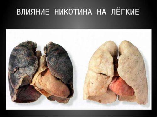Вред курения для человека.jpg