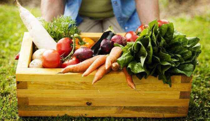 Откуда брать ингредиенты для вкусных блюд на даче.jpg