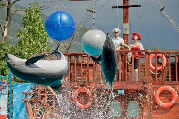 Дельфинарий «Театр морских животных «Акватория»