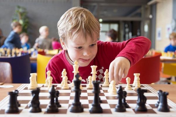 Основные принципы правил шахматной игры