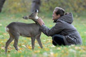 Профессии связанные с животными и природой