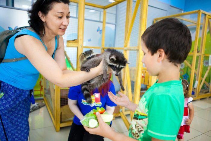 Контактный мини-зоопарк «Цыпа»
