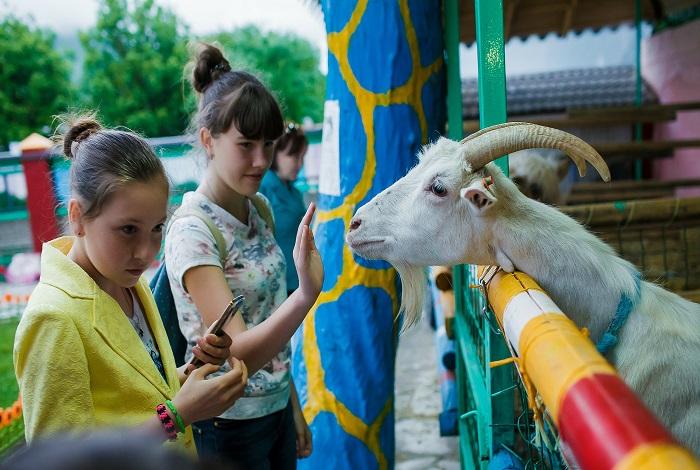 Контактный зоопарк «Весёлая ферма»