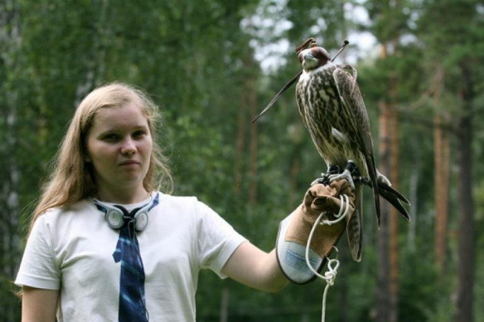 Питомник редких видов птиц Алтай Фалькон