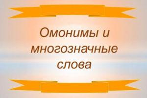 Многозначные слова и омонимы