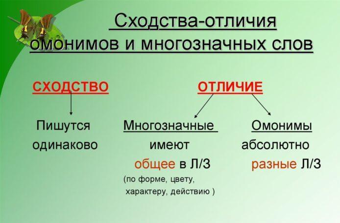 Сходства и отличия многозначных слов