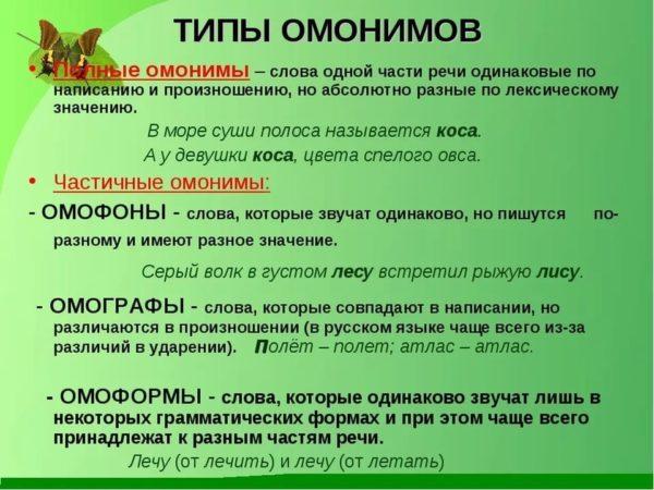 Типы омонимов