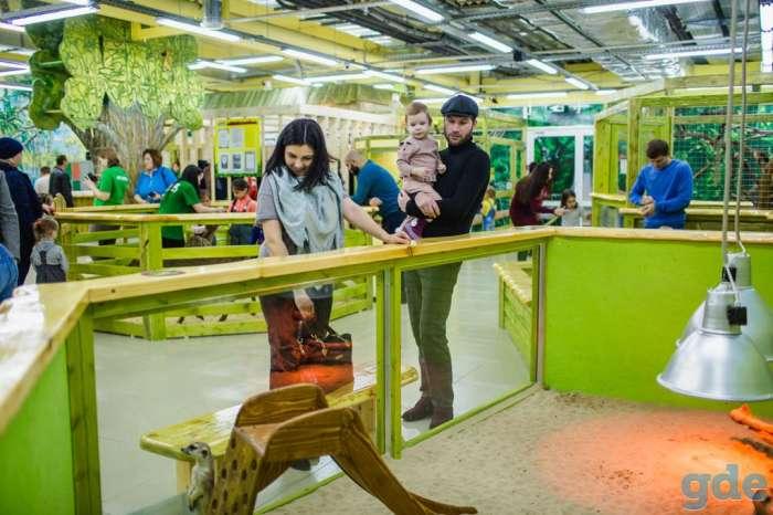 Зоопарк «Зелёная станция»