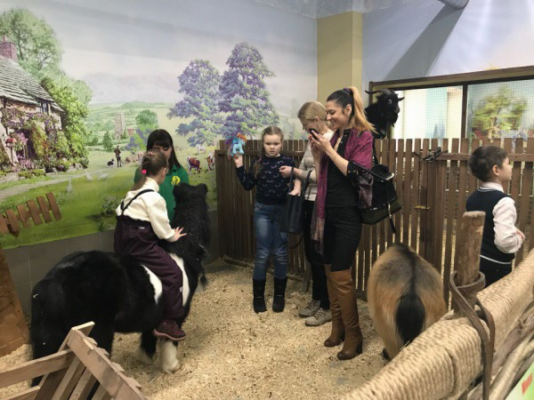 Контактный зоопарк «Зверинец Зооландия»